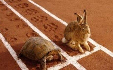 Time limited mediation and optimism bias - Walker Foster Solicitors