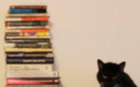 Írók és cicáik / Writers and Kitties