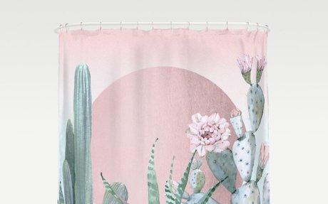 Desert Sunset With Cacti