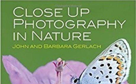 Amazon.com: Close Up Photography in Nature (9780415835893): John and Barbara Gerlach: Book