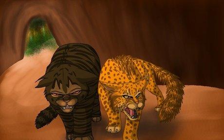 Tigerstar + Leopardstar