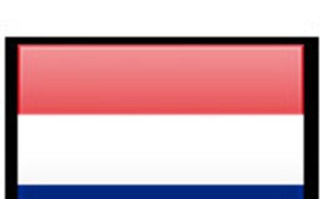 Dutch Survey