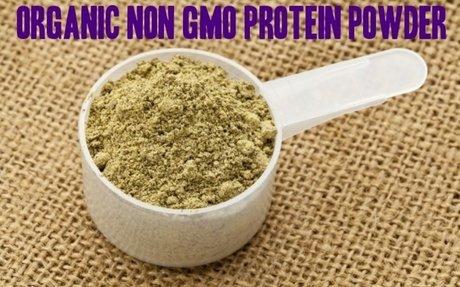 Top 10 Best Organic Non GMO Protein Powder Reviews