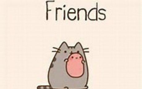 ❤️ Friends ❤️