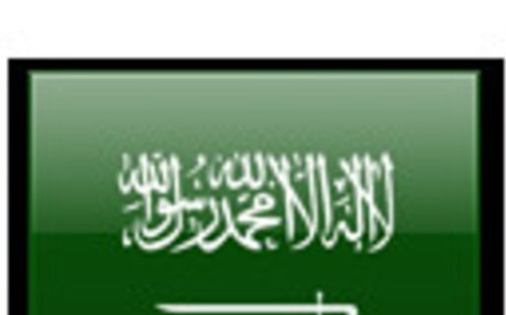 Saudi Arabian Land Surveyors