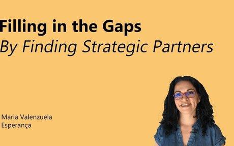 HIPMC: Strategic Partnerships