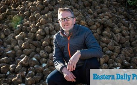 UK beet farmers set to bag a bonus as sugar prices rise