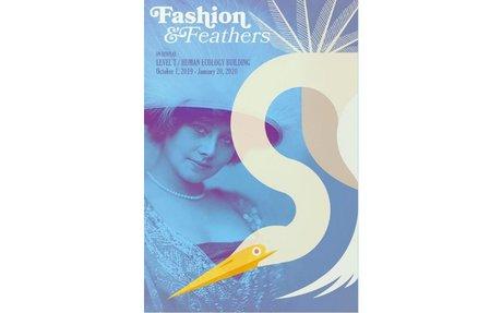 Fashion & Feathers