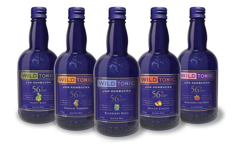Wild Tonic Jun Kombucha expands 5.6% ABV beverage line
