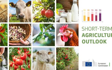EU agri-food sectors show resilience despite challenges from coronavirus