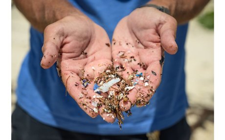 Leading fight against plastic pollution of sea | The Royal Gazette:Bermuda News - Mobile