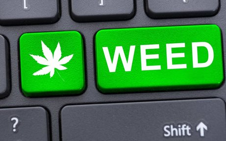 High Tech: How The Digital Age is Changing Pot Culture