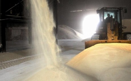 In this harvest, Brazil will return to lead the international sugar market