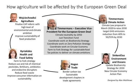 Agriculture in the European Green Deal – CAP Reform
