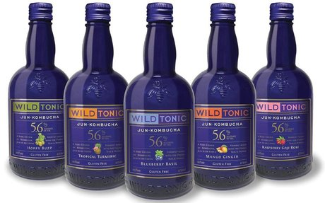 Brescome Barton Offers New Wild Tonic Kombucha Line      | The Beverage Journal