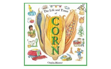 *The life and times of corn