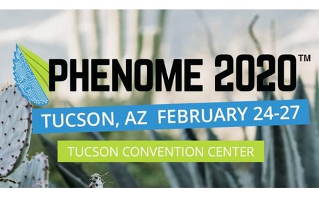 Phenome 2020 Website