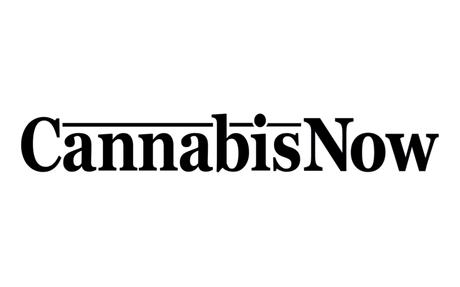 An Elevated Cannabis Experience on the High Seas | Cannabis Now