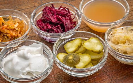 Turkish Mothers Show Fermented Food Products Protect against Mastitis