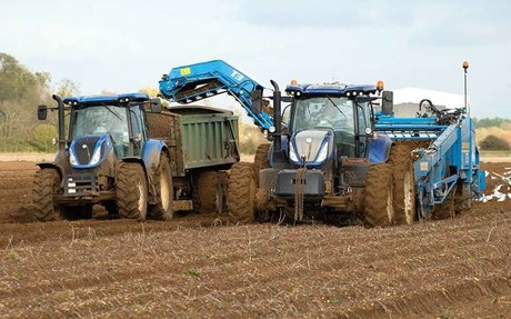 UK Sugar Beet Outlook 2020: Delicate issue of scale for root crop growers
