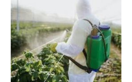 European Commission to forbid Lithuania and Romania using neonicotinoids