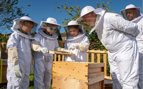 This summer we expanded our beekeeping project for schools