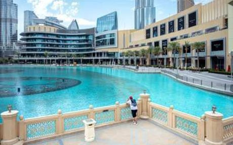 Survey: Most Dubai SMBs Will Shutter By October