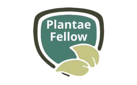 Applications now open for the 2020 Plantae Fellows program