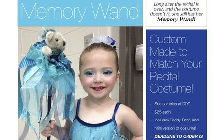 Order Your Memory Wand Here! (Deadline May 17th)