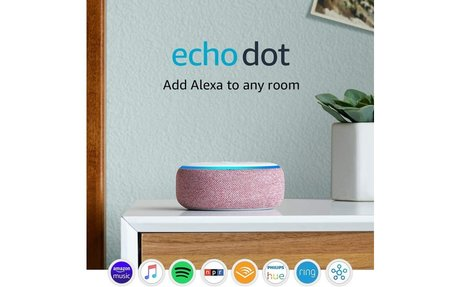 Smart Echo Dot to follow your Mom's Commands!