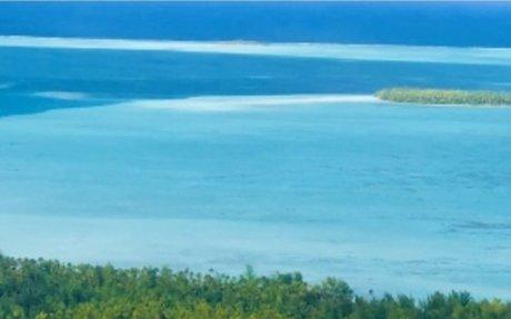 Blue Pacific bliss Brando style