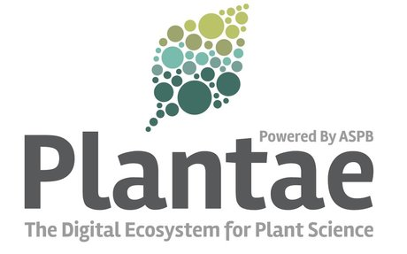 Join the Plant Phenomics Community on Plantae for Year-Round Updates