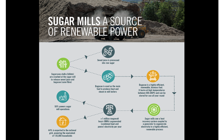 Australian Sugar Millers highlight contribution of sugar cane to renewable energy