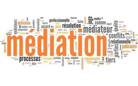 La médiation dans tous ses états : une grande première à l'échelon international - LE M...