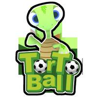 Torto Ball