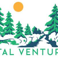 Your vital ventures